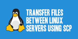 Transfer Files between Linux Servers Using scp